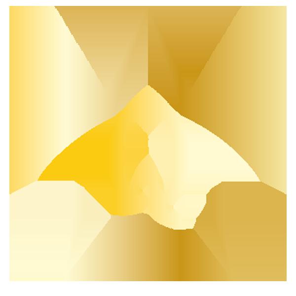 LOGO_Q-INTRO